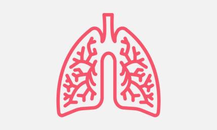 Lungenfibrose – wenn die Lunge vernarbt