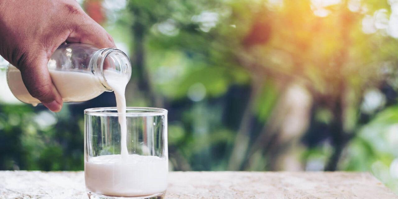 Osteoporose verhindern mit Calcium und Vitamin D