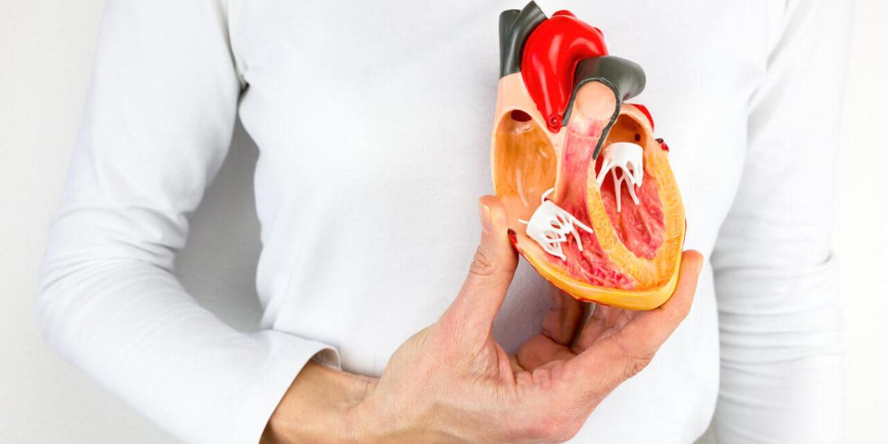 Bypass bei Ablagerungen in Herzgefässen