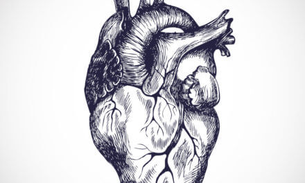 Herzinsuffizienz – Zustand eines geschwächten Herzmuskels