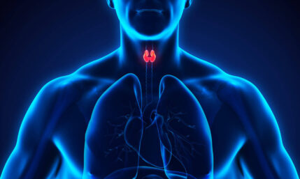 Schilddrüsenkrebs – oft junge Leute betroffen