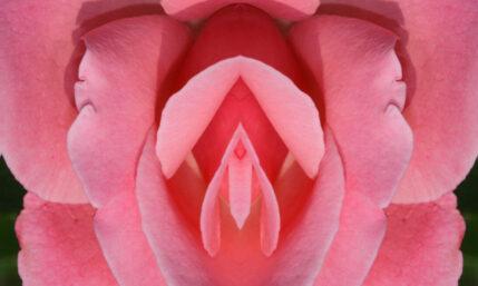Vulvakrebs – Karzinom im Intimbereich