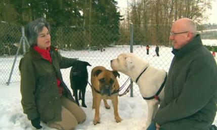 Chirurgin Bettina Marty liebt Ihre Hunde