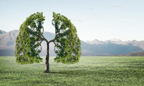 Ein Schatten auf der Lunge – nicht immer harmlos