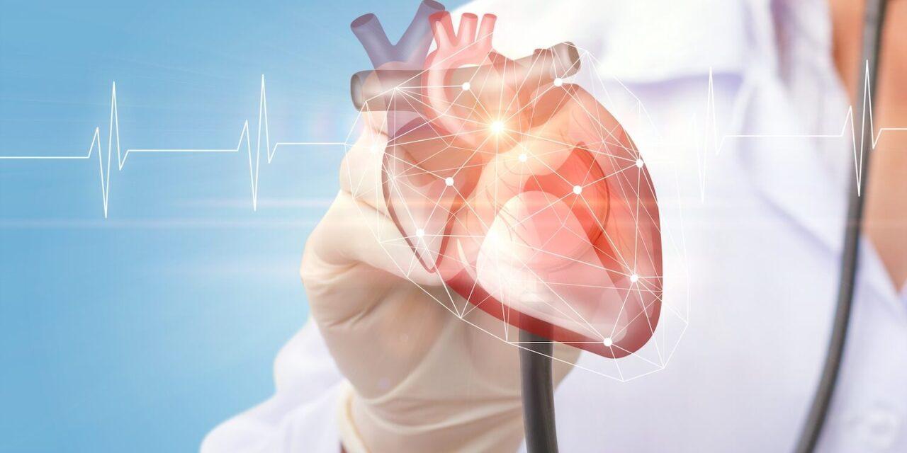 TAVI – Herzklappenfehler modern behandeln