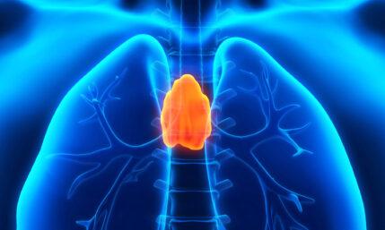 Tumor in der Thymusdrüse