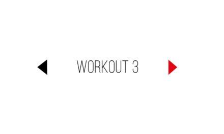 Workout 3 mit Cheftrainer von BOXENBERN