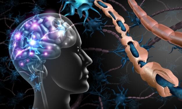 Multiple Sklerose – das Leben geht weiter